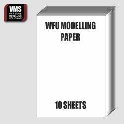 WFU modelling paper for...